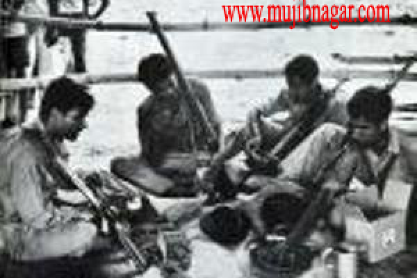 bangladesh_liberation_war_in_1971-1696034CA6-701E-5BA4-FA54-9027E2B20007.png
