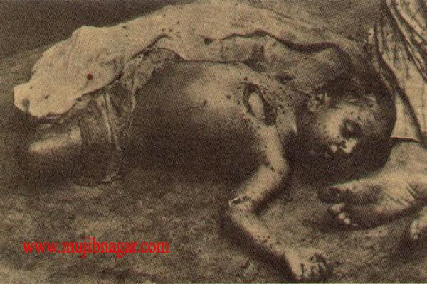 bangladesh_liberation_war_in_1971-250A73C50A-8F46-4FFE-5E0D-0233433639E8.png