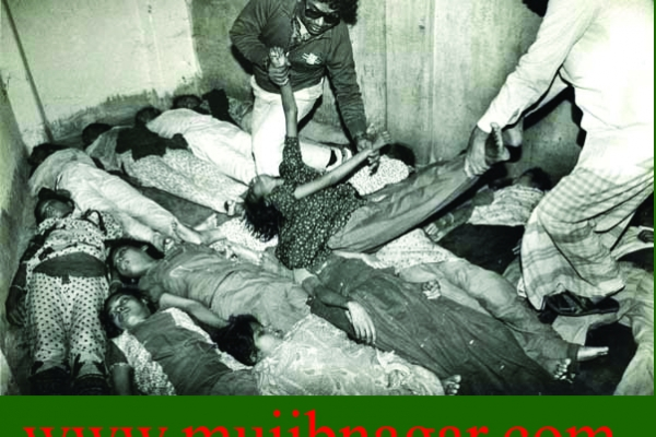 bangladesh_liberation_war_in_1971_rape_girlD204E515-981F-9628-0BE7-55E2F8357F3F.jpg